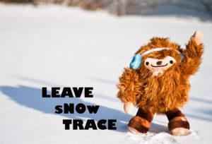 leave_snow_trace (2)