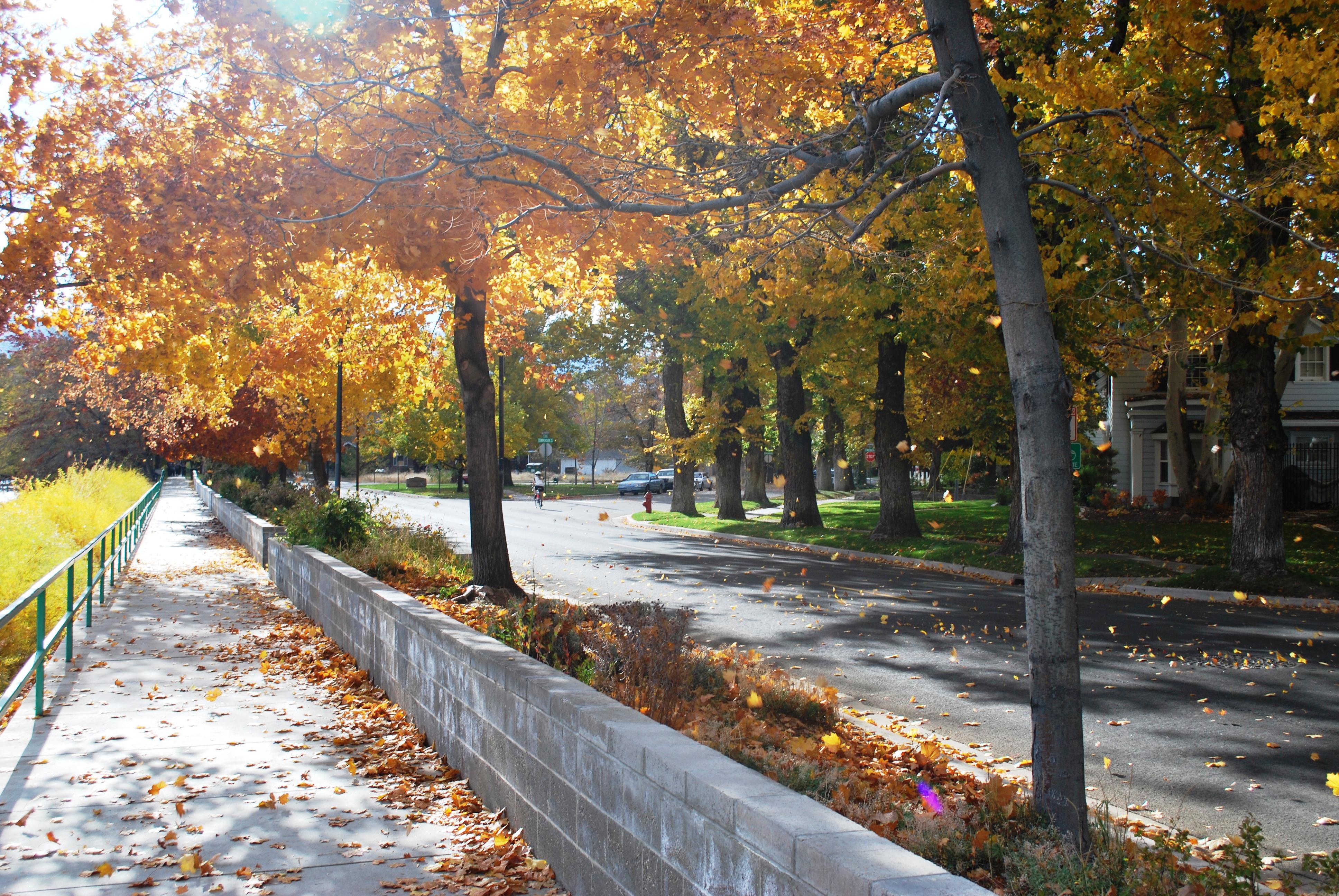 Fall Eats n\' Treats | visitrenotahoe.com