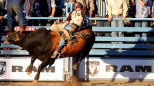 PRCA Xtreme Bulls Reno Rodeo