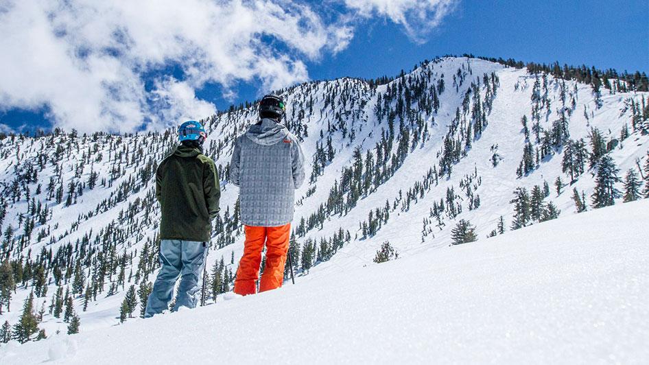 Ski Features.
