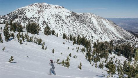 Snowshoeing in Reno Tahoe