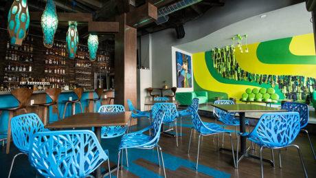 the jungle interior