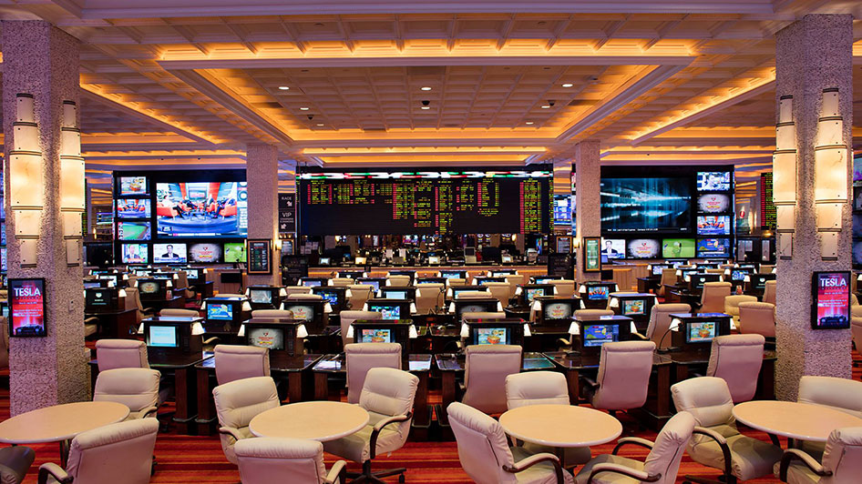 Reno sports betting gruss betting assistant forum
