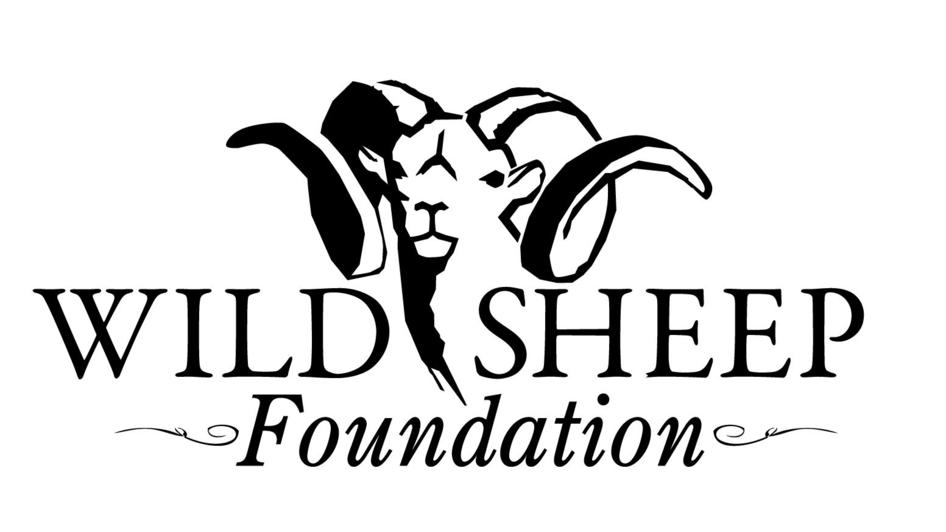 2020 Wild Sheep Show