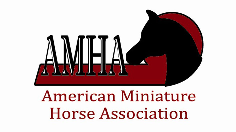 American Miniature Horse Association Western Regional Championship Show 2018