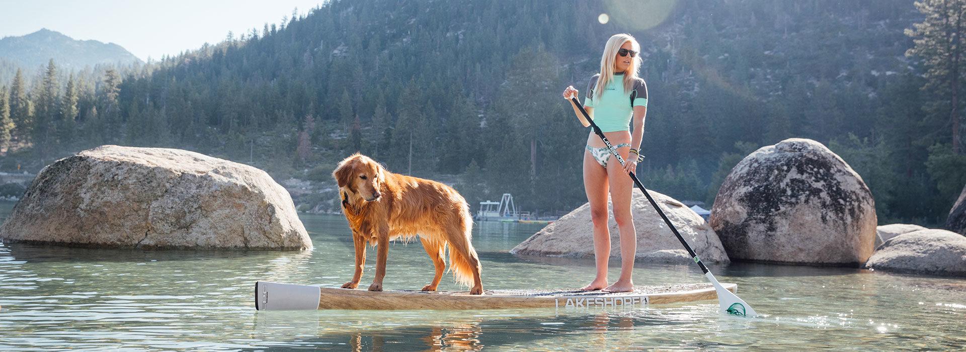 Discover Reno Tahoe