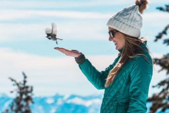 Chickadee Ridge Reno Lake Tahoe