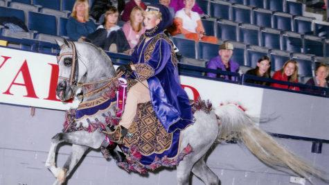 Comstock Arabian Spring Fiesta