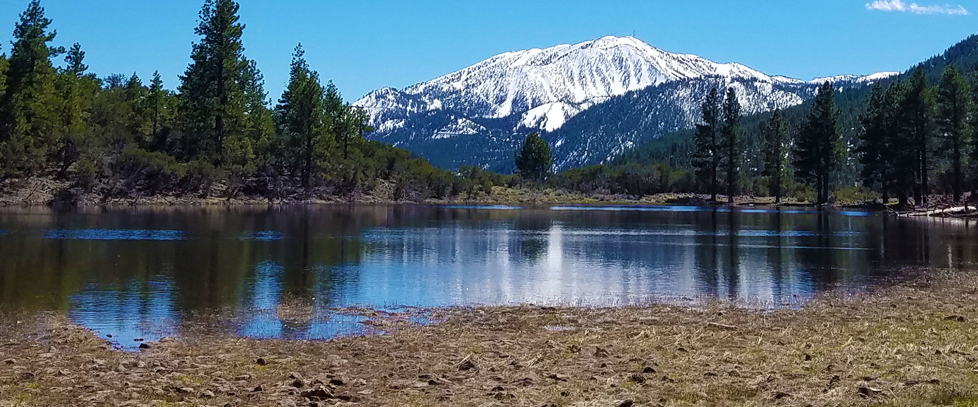 Reno Parks and Tahoe Parks