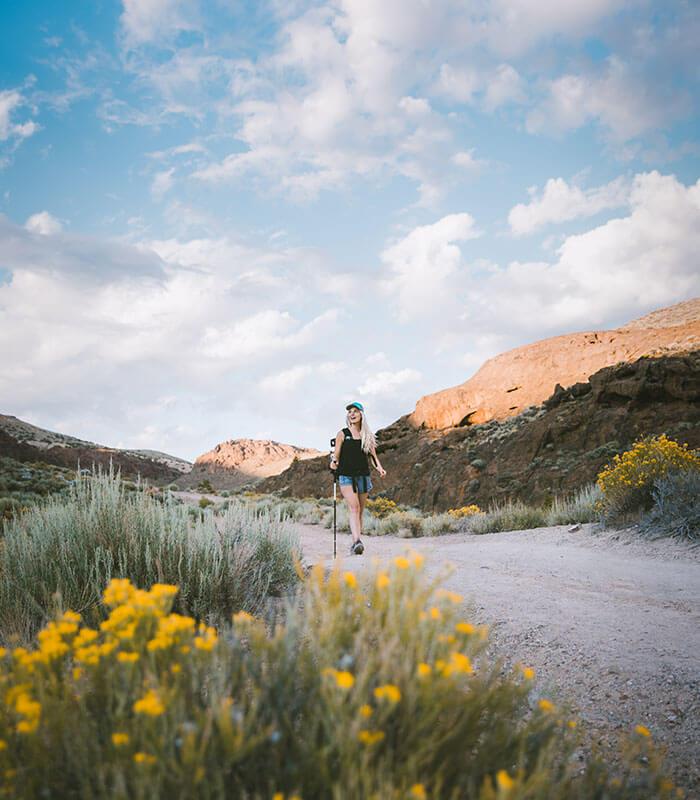 Reno Hiking Desert