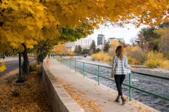Fall colors and Truckee River