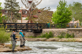 Fishing Truckee River Reno